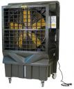 Охладитель воздуха Master BC 220 в Екатеринбурге